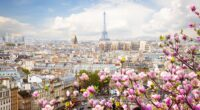 eiffel tower france flowers beautiful 4k 1608983171 200x110 - Eiffel Tower France Flowers Beautiful 4k - Eiffel Tower France Flowers Beautiful 4k wallpapers