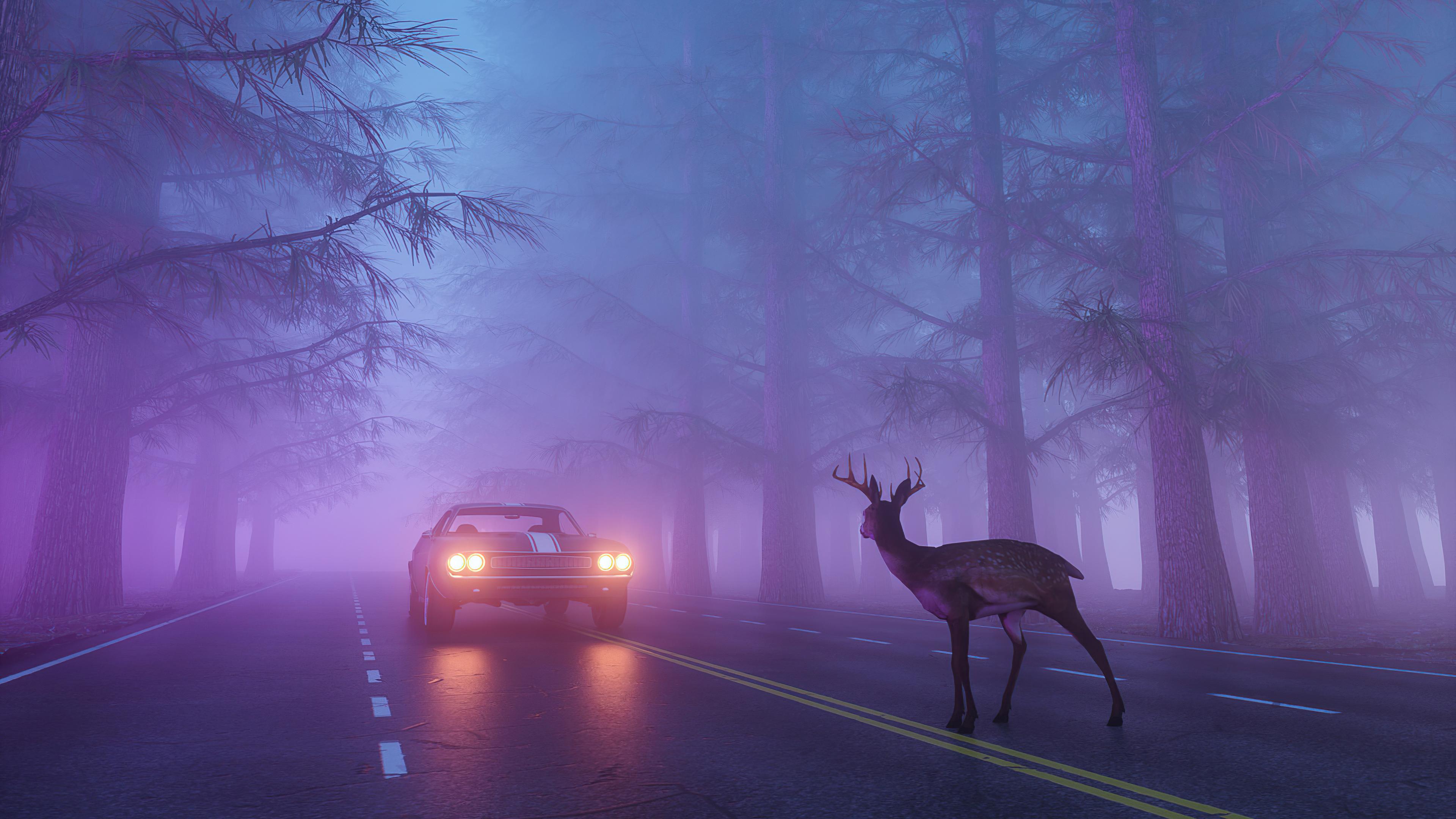 beware of the deer 1614443619 - Beware Of The Deer - Beware Of The Deer wallpapers