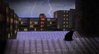 black cat on rooftop lightning 4k 1614617398 200x110 - Black Cat On Rooftop Lightning 4k - Black Cat On Rooftop Lightning 4k wallpapers