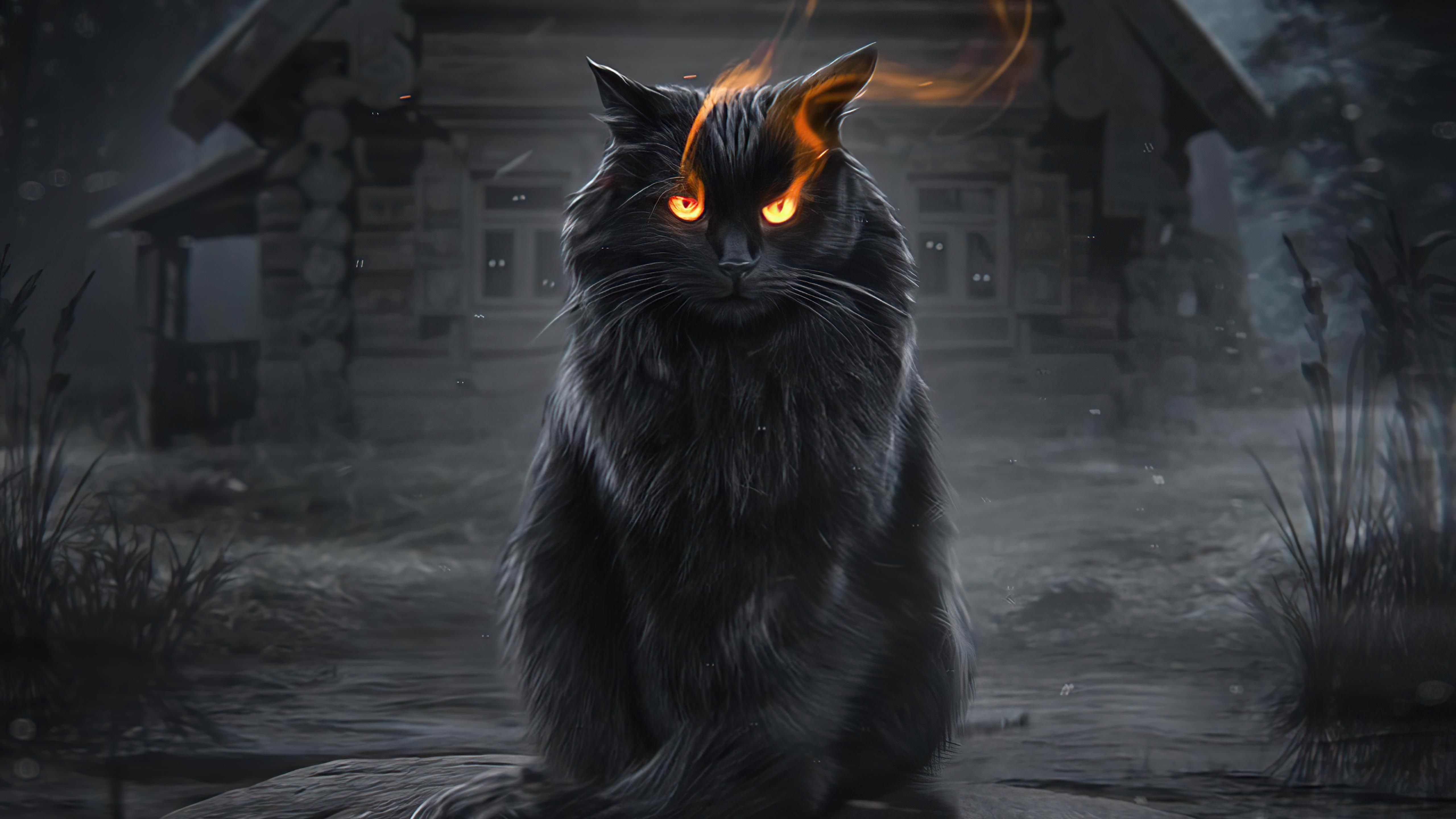 cat fire eyes 4k 1616872023 - Cat Fire Eyes 4k - Cat Fire Eyes 4k wallpapers
