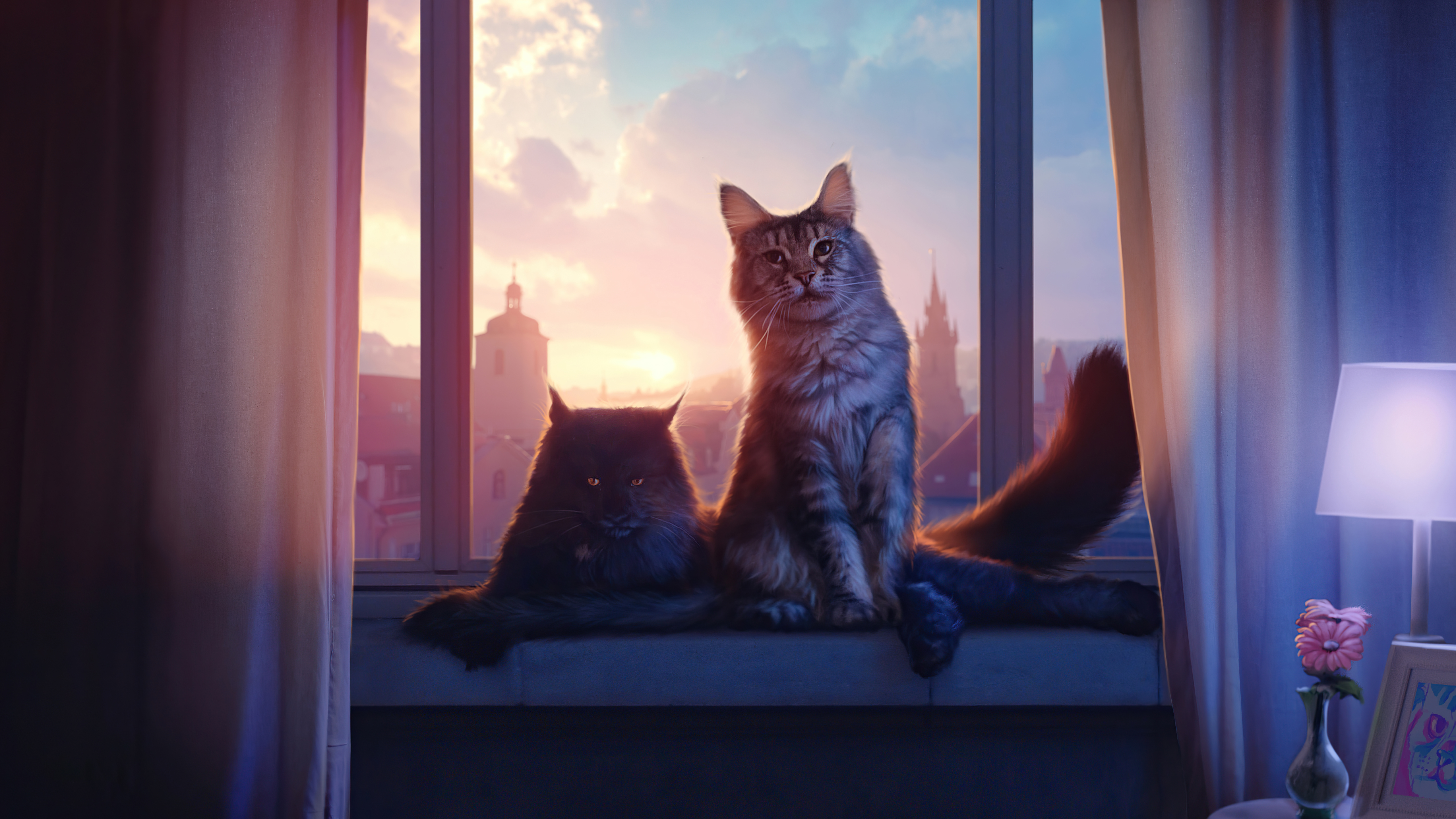 cats 4k 1616872024 - Cats 4k - Cats 4k wallpapers