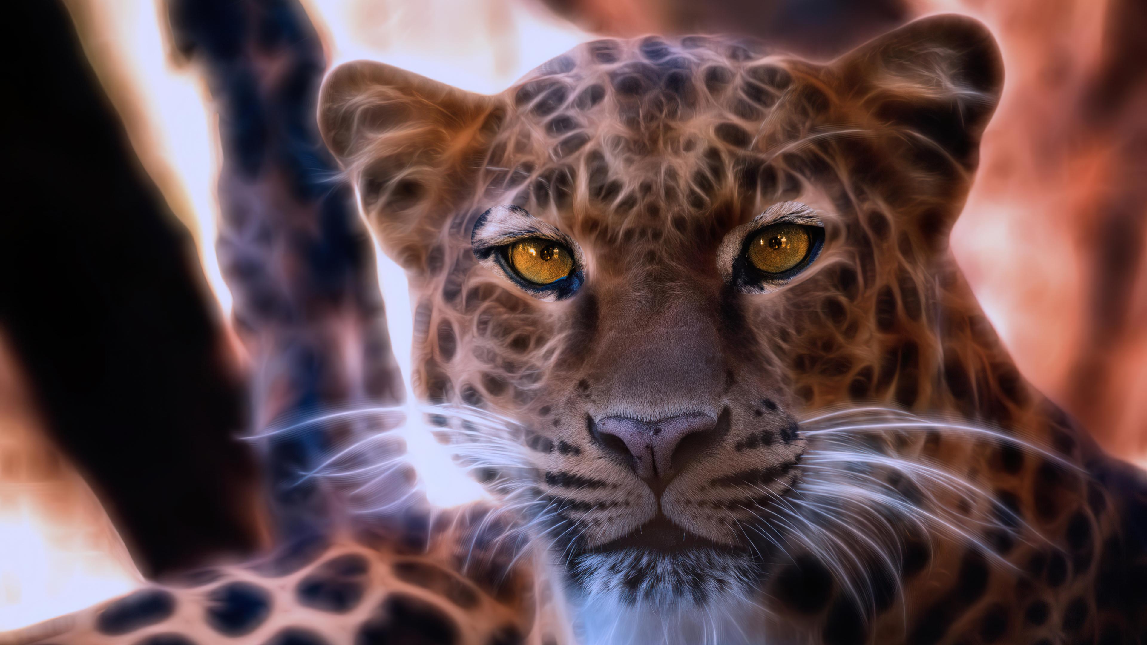 leopard crystal glowing 4k 1616872018 - Leopard Crystal Glowing 4k - Leopard Crystal Glowing 4k wallpapers