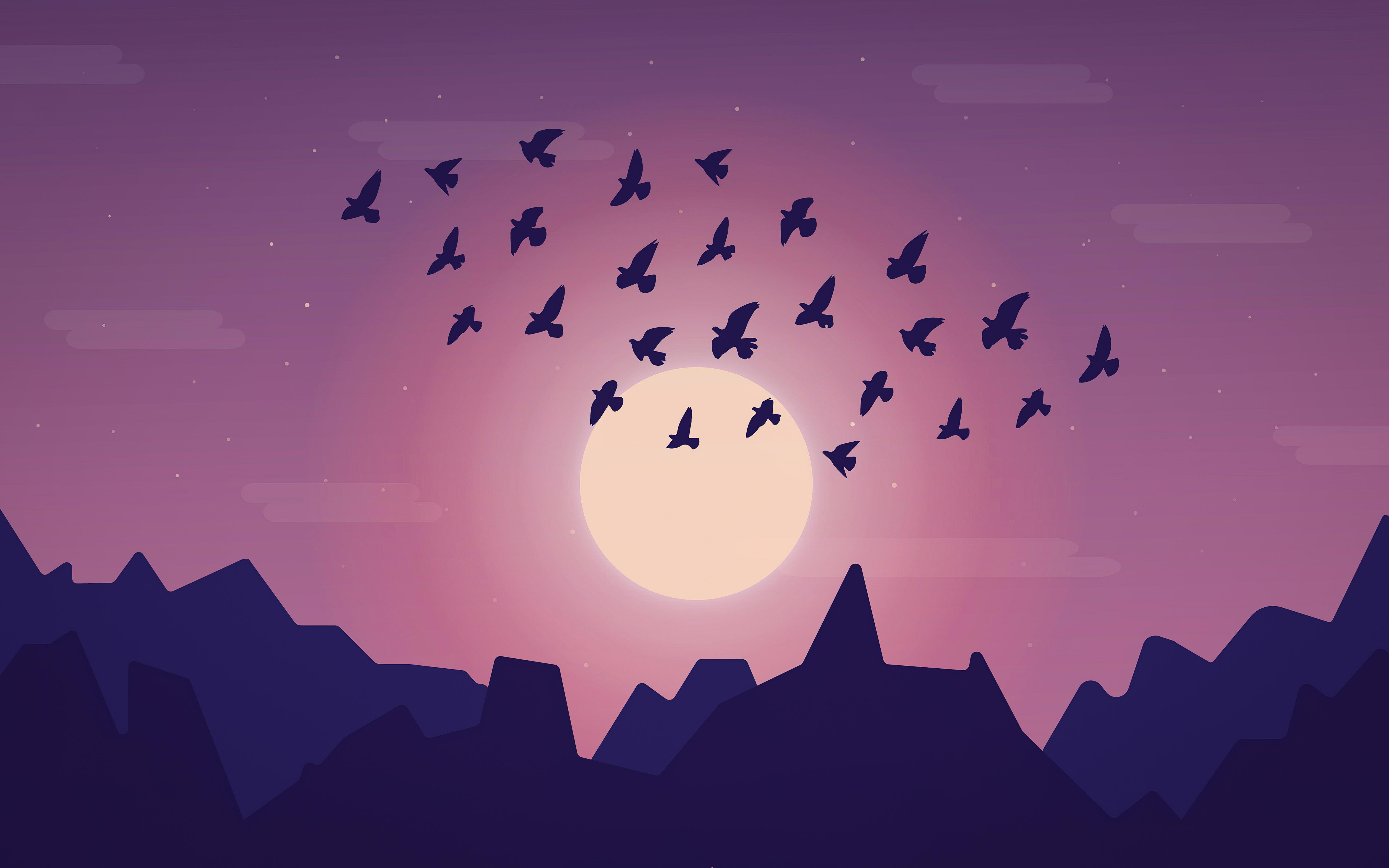 birds sky minimal 4k 1618132771 - Birds Sky Minimal 4k - Birds Sky Minimal 4k wallpapers