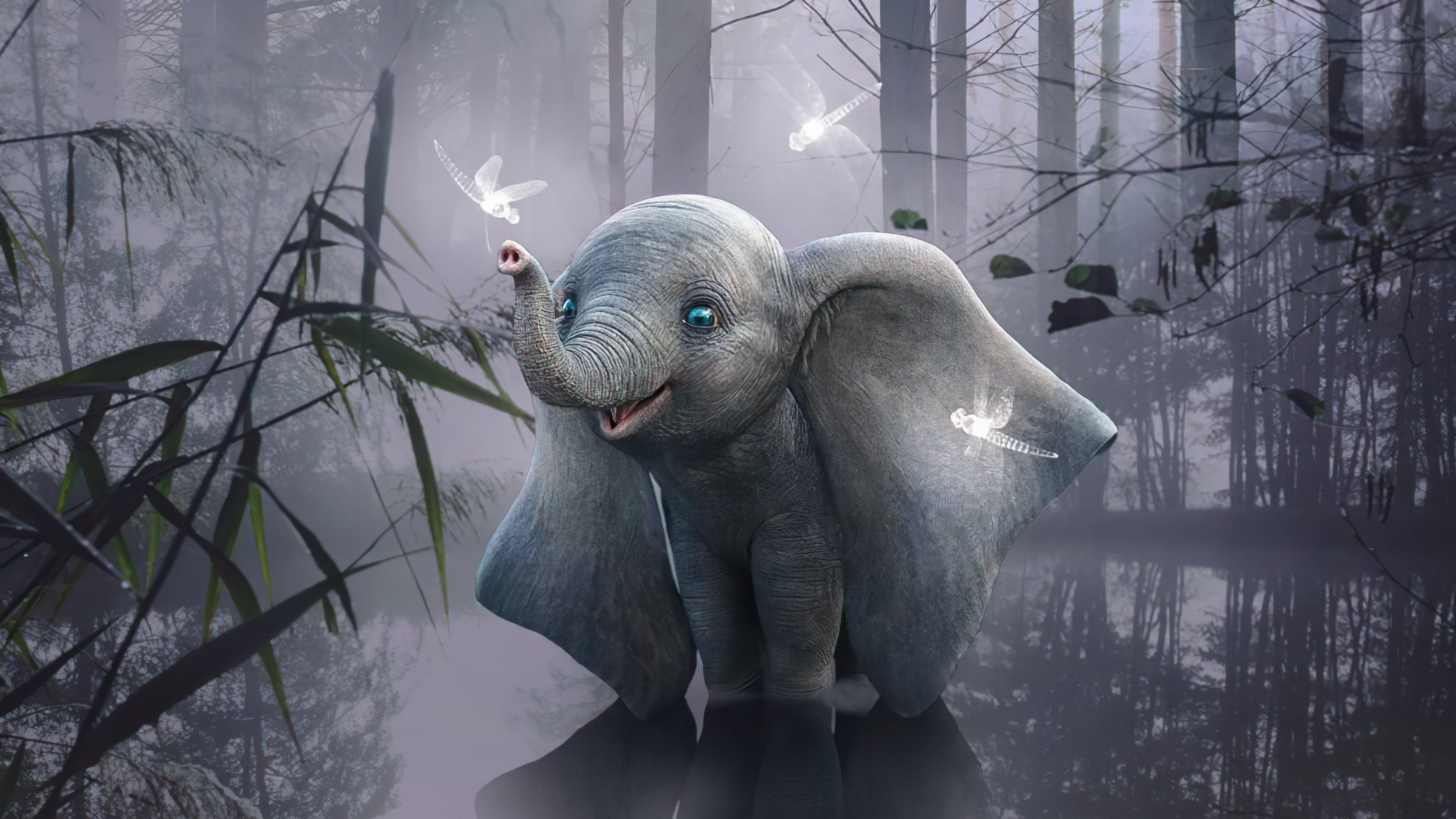 elephant is this heaven 4k 1618128873 - Elephant Is This Heaven 4k - Elephant Is This Heaven 4k wallpapers