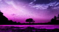 evening mood pink 4k 1618132157 200x110 - Evening Mood Pink 4k - Evening Mood Pink 4k wallpapers