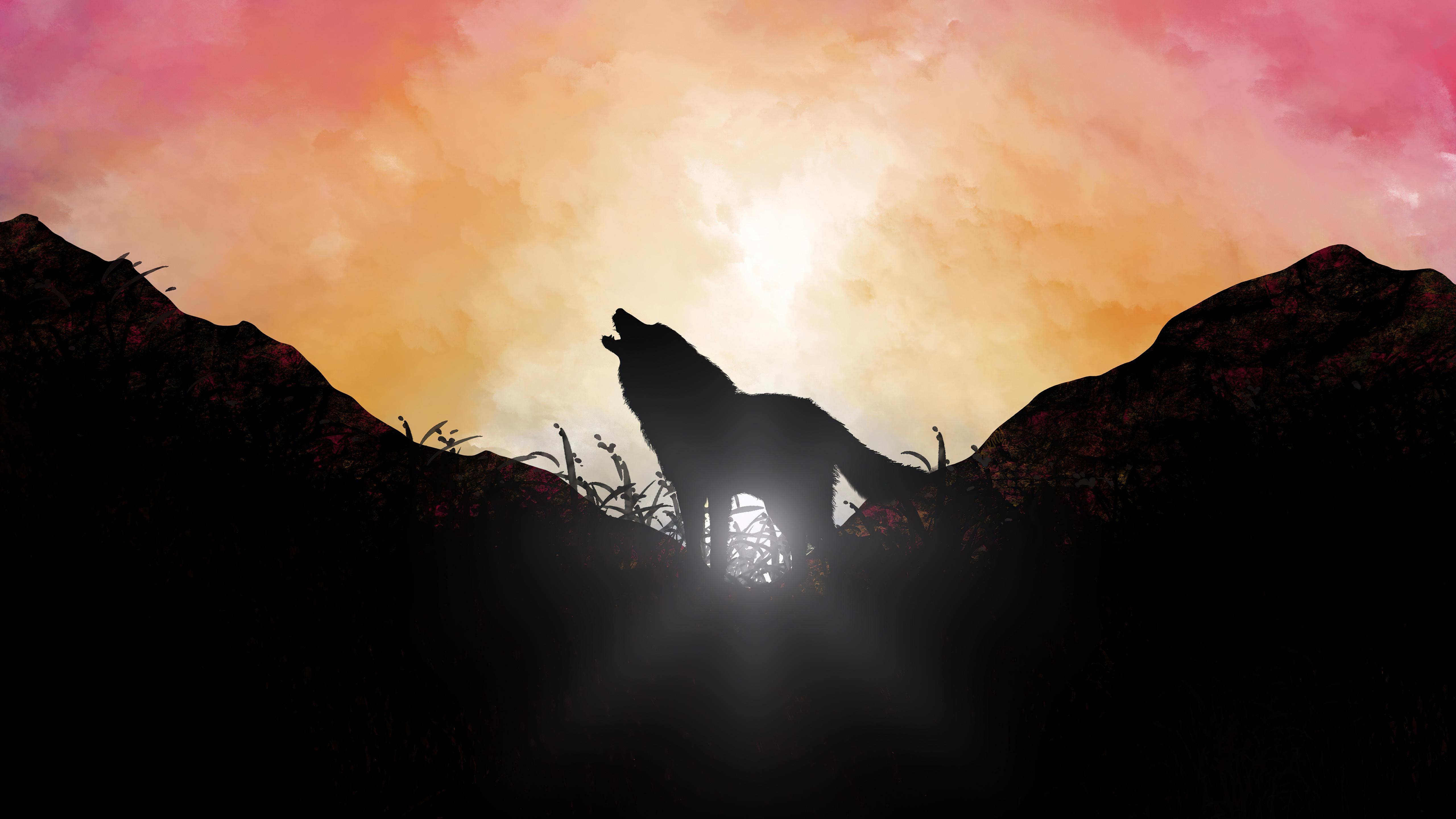 fox howling sunrise 4k 1618131120 - Fox Howling Sunrise 4k - Fox Howling Sunrise 4k wallpapers