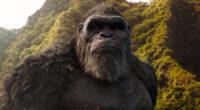 godzilla vs kong jungle 4k 1618166839 200x110 - Godzilla Vs Kong Jungle 4k - Godzilla Vs Kong Jungle 4k wallpapers