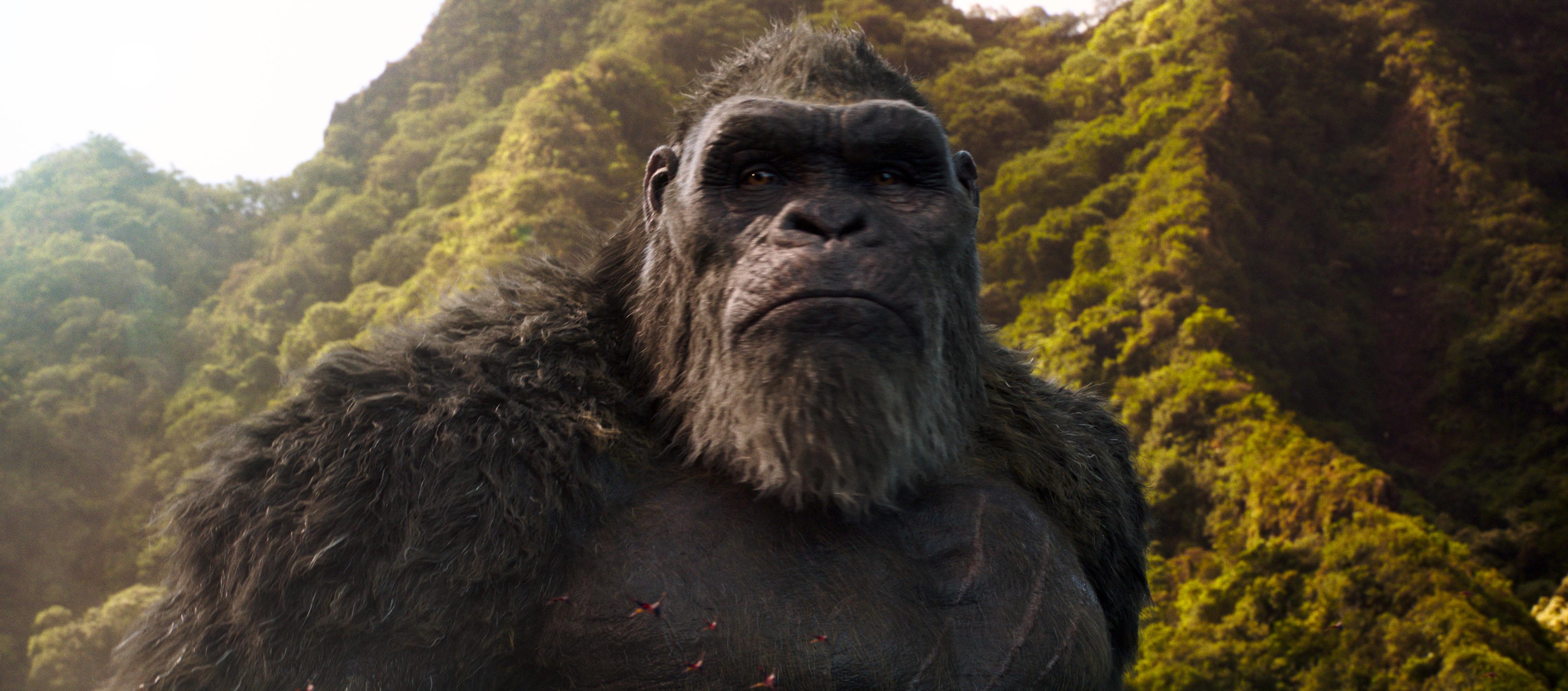 godzilla vs kong jungle 4k 1618166839 - Godzilla Vs Kong Jungle 4k - Godzilla Vs Kong Jungle 4k wallpapers