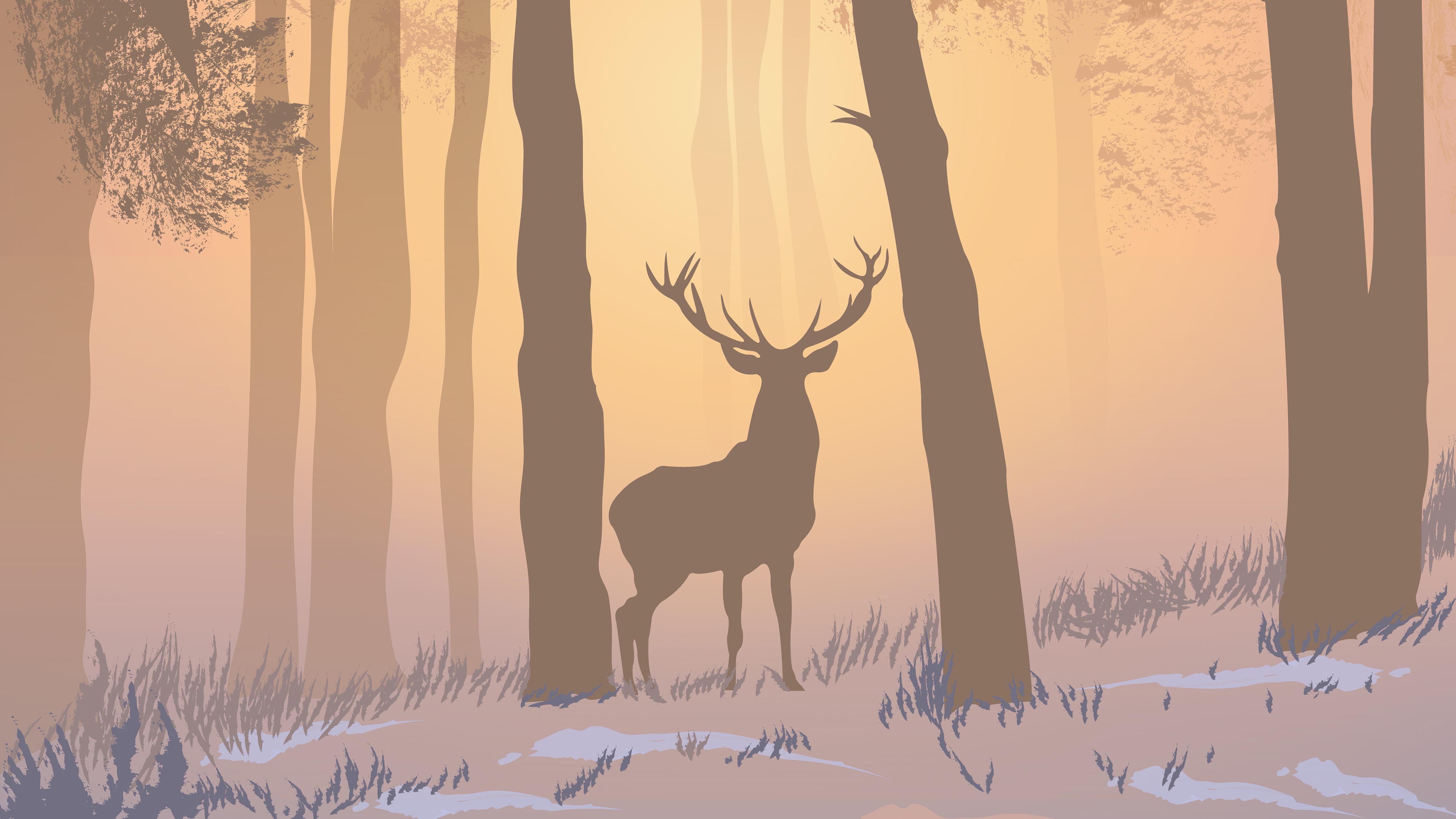 reinnder forest foggy morning 4k 1618133576 - Reinnder Forest Foggy Morning 4k - Reinnder Forest Foggy Morning 4k wallpapers