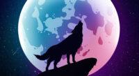 wolf howling moon night minimal 4k 1618132771 200x110 - Wolf Howling Moon Night Minimal 4k - Wolf Howling Moon Night Minimal 4k wallpapers