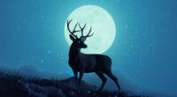 reindeer minimal sky 5k 1630606910 200x110 - Reindeer Minimal Sky 5k -